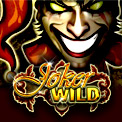 Joker Wild - Video poker game similar to the Jack Vegas games you can find in restaurants around the country. Joker Wild is a classic video poker game where we added a joker to the game. The joker can be counted as any card, which increases your chances to win.