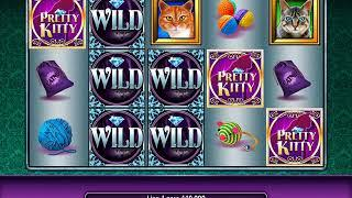 PRETTY KITTY Video Slot Casino Game with a PRETTY KITTY FREE SPIN BONUS