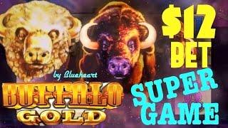 BUFFALO GOLD slot machine MAX BET SUPER GAME and JACKPOT WINS (WONDER 4 JACKPOTS)