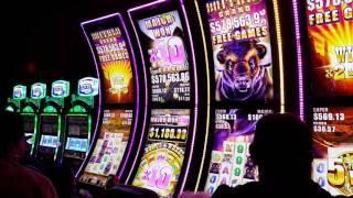 Buffalo Grand Slot Machine - New Game - Quick Teaser