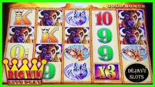 • BIG WINS - LIVE PLAY - BONUS - BUFFALO GOLD - SLOT MACHINE •