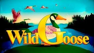 Wild Goose Slot - GREAT SESSION, ALL FEATURES!