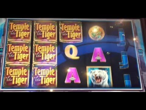 **BIG WIN** - Temple of the Tiger == 10 cents machine == $9 Bet Bonus == 9 spins ** SLOT LOVER **