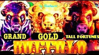 • GOING AFTER BUFFALO • BUFFALO GOLD slot machine VS BUFFALO GRAND slot BONUS WINS!