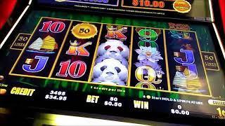 dragon cash cash live play MAgic Panda Episode 255 $$ Casino Adventures