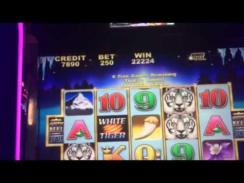 White tiger HANDPAY JACKPOT high limit slots