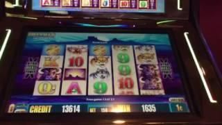 Buffalo Deluxe Slot Machine Free Spin Bonus Treasure Island Casino Las Vegas