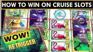 HOW TO WIN ON SLOTS @ SEA! ADVANTAGE PLAY FOR THE WIN!  JUNGLE WILDS SLOT BONUSES & CHOCOLATE...YUM!