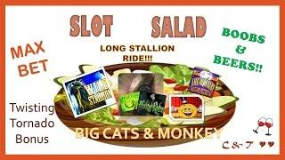 SLOT SALAD(#2) - A Little Bit of EVERYTHING ~ BIG WINS, MAX BETS, Line Hits & Slot Machine Bonuses•