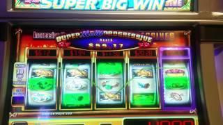 Super Multi Progressive King of the Wild Slot Machine - Reel 5 Progressive Bonus won!