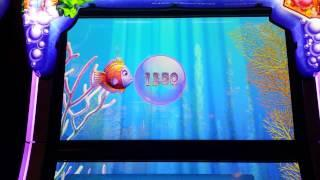 Gold Fish 3 Slot Machine. Purple Fish Bonus.