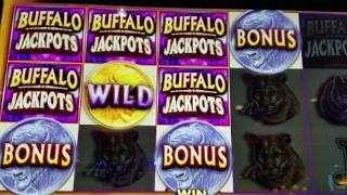 (BUFFALO JACKPOT BY AGS) FREE SPINS DIAMOND WIN!!