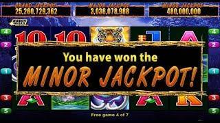 •Minor Jackpots won! Tough Game to get Bonus! WILD TOOTH! •