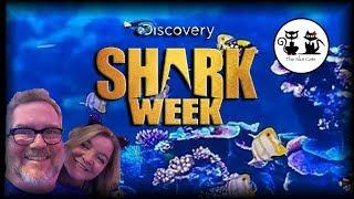 PIGGY BANKIN' • SHARK WEEK WITH COOL CAT MARY (Part 2 of 2)
