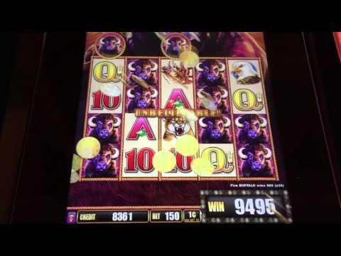 Buffalo stampede slot machine download college football gambling sites