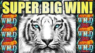 •SUPER BIG WIN!• WILDS WILDS WILD! SIBERIAN STORM (IGT) Slot Machine Bonus REPOST