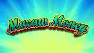 Macaw Money Slot Game•