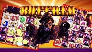 ⋆ Slots ⋆NEW BIG WINS - HITS 'N BONUSES !! ⋆ Slots ⋆ BUFFALO STAMPEDE ⋆ Slots ⋆ [COMING SOON ⋆ Slots