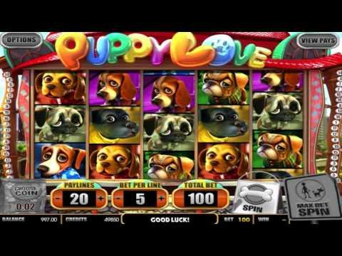 play online free slot machines american poker 2