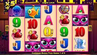 MISS KITTY GOLD Video Slot Casino Game with a CASHMAN FREE SPIN BONUS