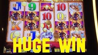 BUFFALO Gold Collection live play $18.00/spin HUGE WIN ON FIRST SPIN