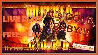 •LIVE PLAY on FREE PLAY• Buffalo Gold($2.40) • HOW MUCH CASH?? ~ Aristocrat•