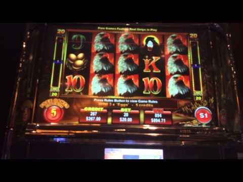 Eagle bucks HANDPAY jackpot $20 bet high lot slots