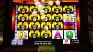 50 Lions - Aristocrat - Slot Jackpot Win (331x bet)