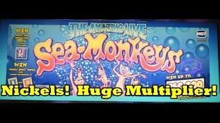 IGT - Sea Monkeys - Nickels!