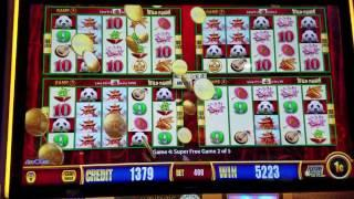 Wild Panda Slot Machine Bonus BIG WIN!!!! Live Play
