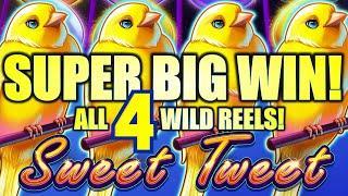⋆ Slots ⋆SUPER BIG WIN!⋆ Slots ⋆ ALL 4 WILD CANARIES! ⋆ Slots ⋆ $5.00 BET SWEET TWEET (DROP & LOCK)
