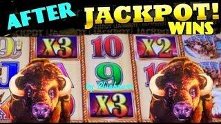 AFTER JACKPOT WINS! Buffalo Gold slot machine BONUS WINS! (Wonder 4 Wonder Wheel)