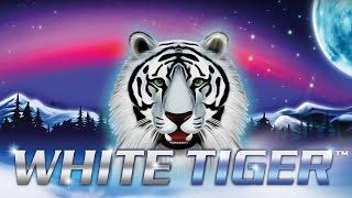 White Tiger Slot - BIG WIN Bonus!