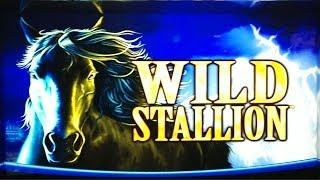 Wild Stallion Slot Bonus - Free Spins Huge Win!!
