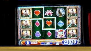 Jungle Wild 3 Over 200x Win!