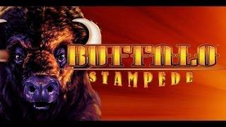 BUFFALO STAMPEDE : HUGE LINE WIN - ARISTOCRAT