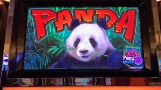 Panda Wins • Kickapoo Lucky Eagle Casino
