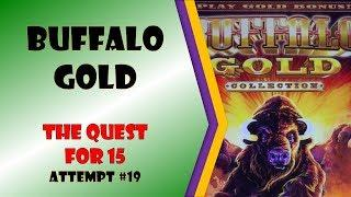 The Quest for 15 - Buffalo Gold Attempt #19