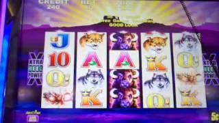 Buffalo slot machine bonus major retriggers~ Aristocrat