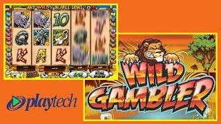 Wild Gambler Online Slot from Playtech
