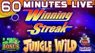 • 60 MINUTES LIVE• JUNGLE WILD • WINNING STREAK SLOT MACHINE!