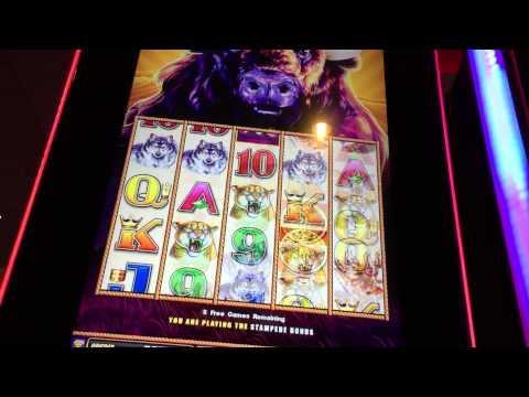 play wheel of fortune slot machine online joker poker