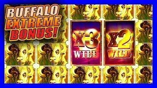 BIG WINS WHILE COLLECTING GOLD BUFFALO SYMBOLS • BUFFALO EXTREME • BIG WINS