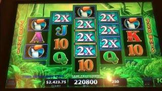 MEGA JACKPOT(HAND PAY)•ANY LUCK ? Free Play Slot Live Play (10)•Prowling Panther Slot•$2.50 Bet