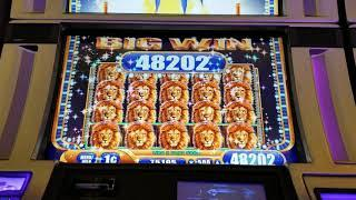 Full Screen of Lions slot machine Max Bet with insanely high progressive