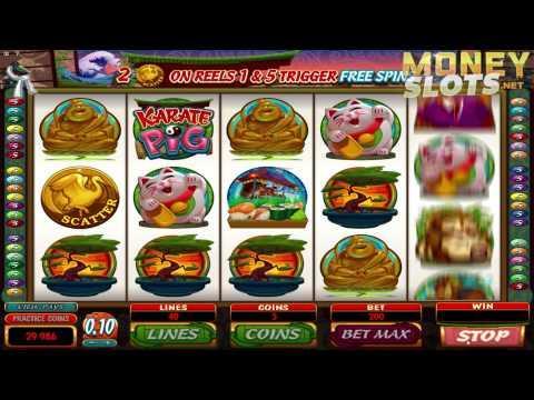 Karate Pig Video Slots Review | MoneySlots.net