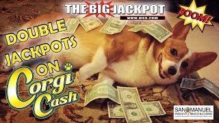 $$ DOUBLE JACKPOTS $$ ON • CORGI CASH •