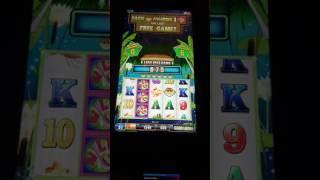 Flippin Wild Bonus Big Win Slot Machine Max Bet