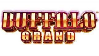 1ST SPIN HUGE WIN! BUFFALO GRAND Free Spin / Progressive win Aristocrat