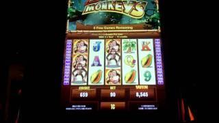 Jungle Monkeys Slot Bonus - Ainsworth